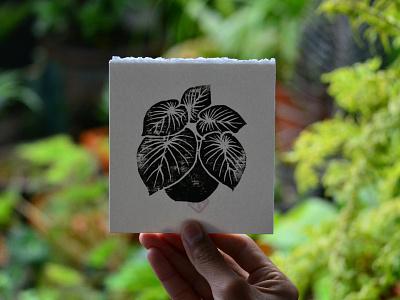 Philodendron Gloriosum paper botanical philodendron nature plants linocut engraving print
