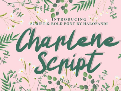 Charlene Script bold calligraphic calligraphy typography type handwritten script lettering letter alphabet font