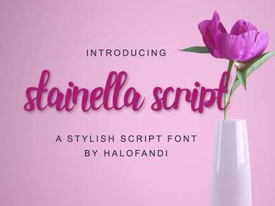Stainella Script Font type letter design template wedding hand art handwriting script font