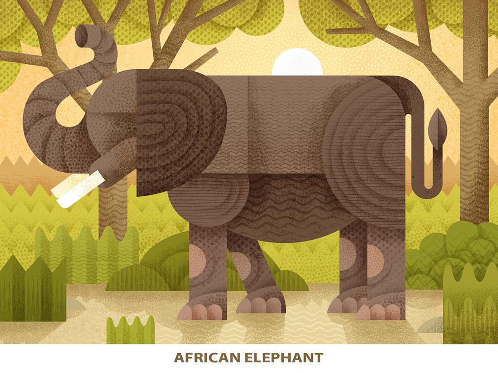 Endangered animal 1 a