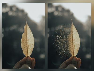 dispersion effect - Photo Manipulation