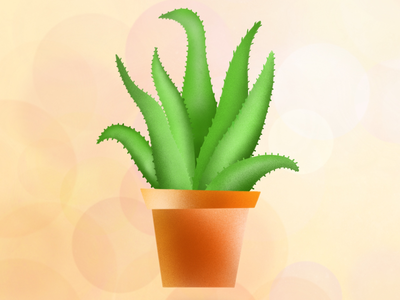 Procreate Illustration - pot_plant_aloe