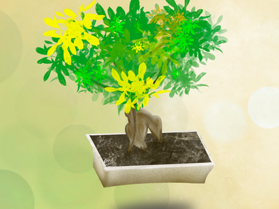 Procreate Illustration - pot_plant_bonsai