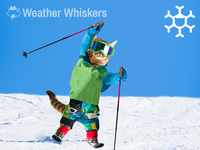 Ski Cat