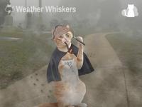 Cleerly Iz Fog