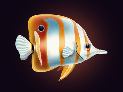 Copperband butterflyfish shadow design vector series noise shadow noise illustrator illustration illustraion fishes fish