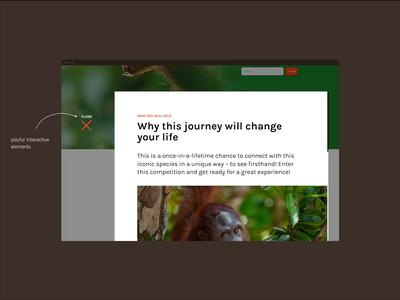 #OrangutanFreedom Webdesign & Development