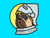 Pug Of Arc