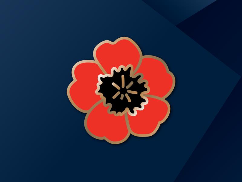 Veterans Day flower illustration poppy illustration