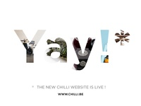new chilli.be site