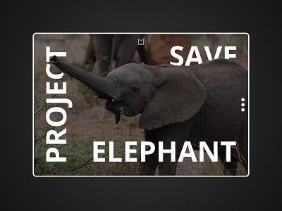 Project Save Elephant animal elephant psd photoshop webdesign website uxdesign uidesign ux ui