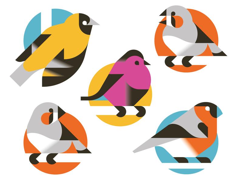 The bird collection vector print minimal illustration bird animal