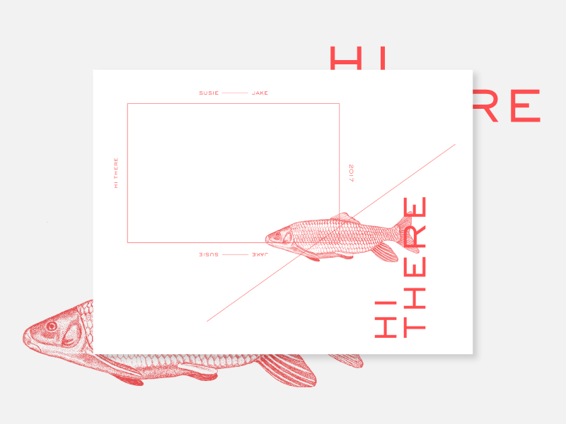Hi there exploration stationary square strokes type red layout illustration fish