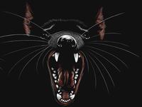 Tasmanian Roar
