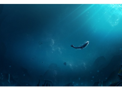 Whale ocean stone color animal whale deep landscape under water work home illustration motion graphics