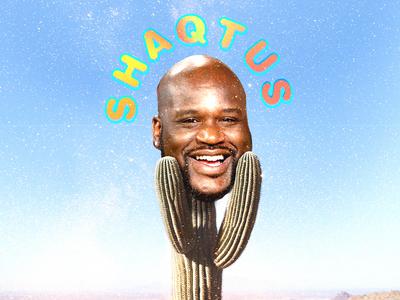 Shaqtus