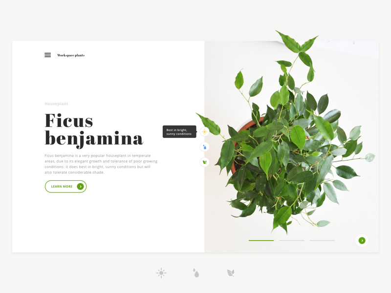 Workspace plants typography icons workspace ui ux design landing page