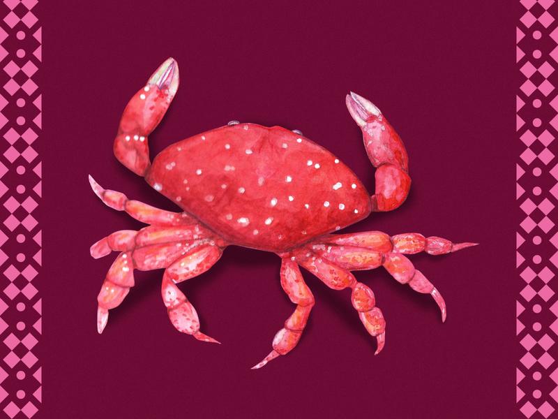 Strawberry Crab animal illustration istanbul seashell animal marine life crab design editorial illustration watercolor flamboyant concept art illustration