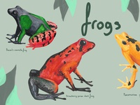 Watercolor Frog and Toads / Children's Book Illustration 2