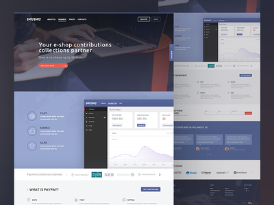 paypay homepage analytics dashboard money startup finance product website ui credit debit card payment transaction website interface design responsive grid bootstrap layout ui ux simple clean interface bank landing page