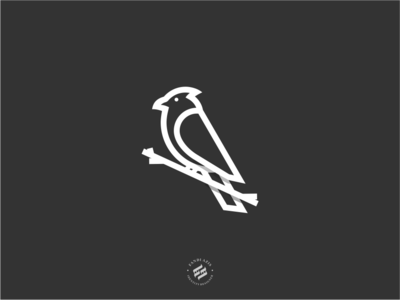 Cardinal Logo bold bird logo strong brand identity design brand illustration logo animal logo animal logo design identity branding