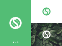 S + Leaf Concept modern logo minimalism leaf logo simple logo branding design bold illustration brand identity logo design identity