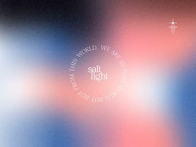 saltlight - mood vector illustration typography branding brand logo design