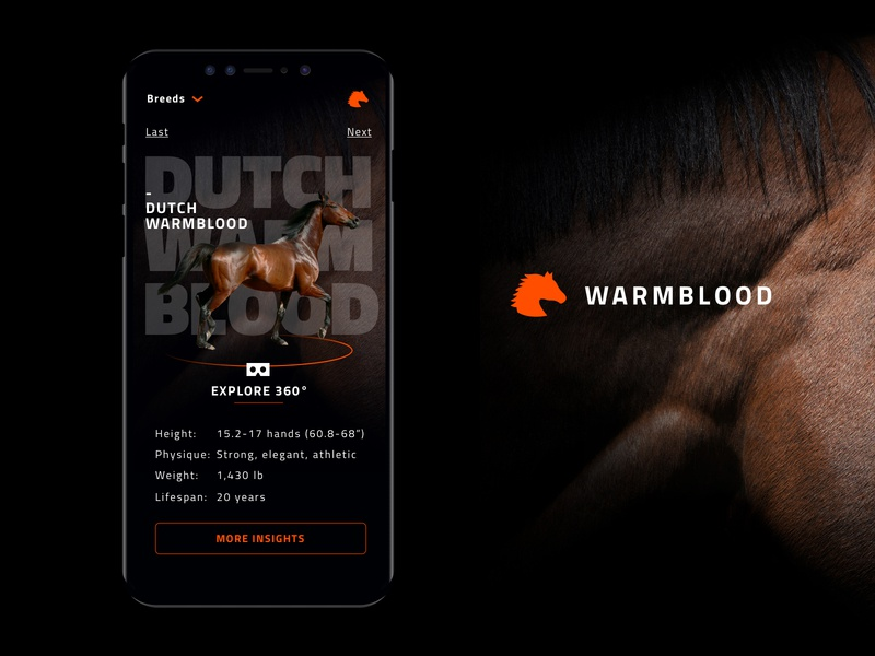 WARMBLOOD smartphone design application ux design ux  ui ux app horse