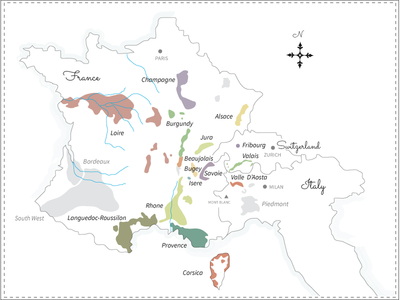 Wine map regions map wine topography illustration vector ui ux