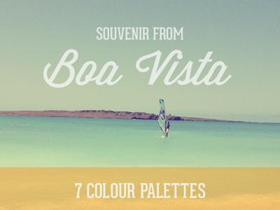Souvenir from Boa Vista colour color palette shades sea vibrant free