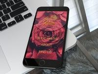 La Rosa Bradning design & App