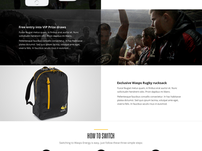 Wasps Energy clean design color web dark yellow simple minimal interface landing page energy rugby sport flat creative clean mobile design website ux ui