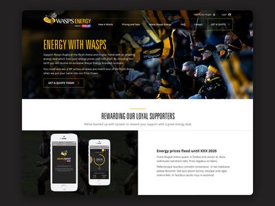 Wasps Energy