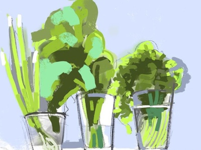Green onions on the window sill illustration still life procreate