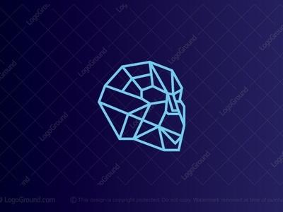 Skull Tech Logo sale logo salelogo colors logo ground logoground mascot monoline monogram logogram identity illustrator tech logo telecomunication technology logo skull skull logo skull best color