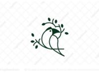 Nature Toucan Linear Logo
