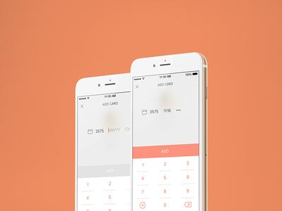 Allset Payment Info