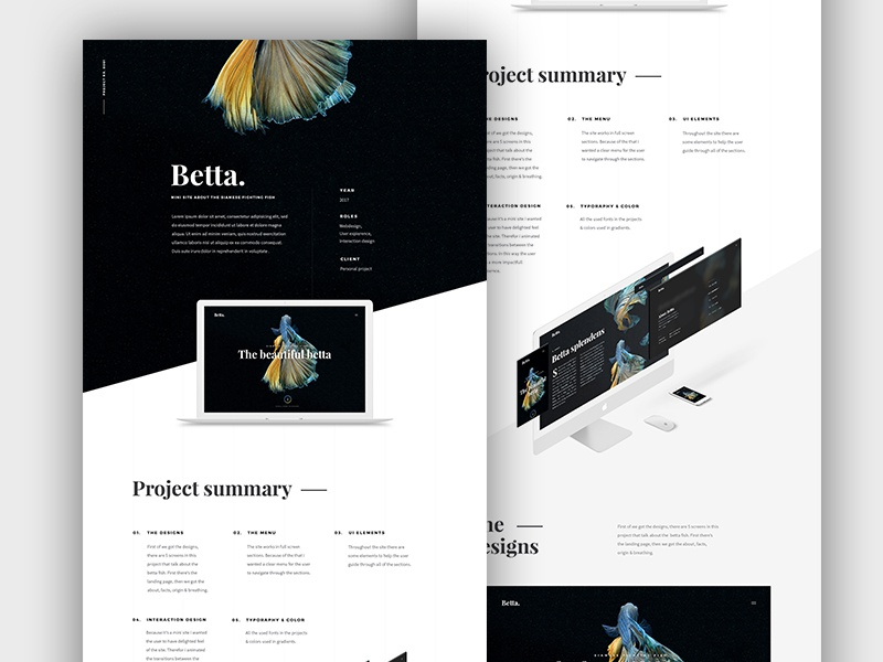 Behance project