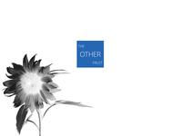 Biosphere   TOF® Artists Series II