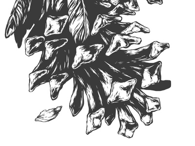Fragment 7