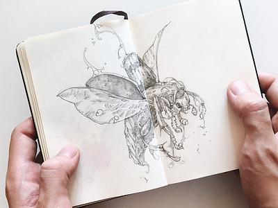 Gravedigger insect beetle gravedigger pencil moleskine drawing sketch handdrawing graphic further up ivan belikov illustration