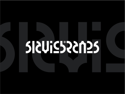 Play With Type - Slavic Brands vector brandits branding logo roots slavic geometric typecase typography type play