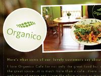 Organico Flyer / Front
