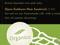 Organico Flyer Back