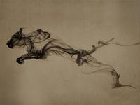 Ink Animation