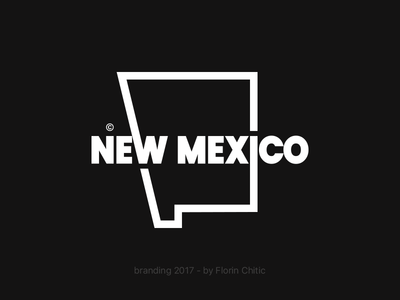 New Mexico USA State Branding new mexico us state typography logo monogram brand trademark concept creative branding design