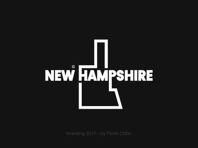 New Hampshire USA State Branding new hampshire usa state graphic typography logo brand trademark concept creative branding design
