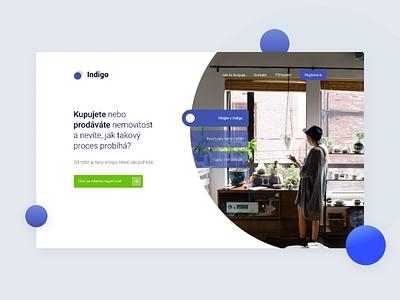 Indigo - App Log In design branding flat ux ui web webdesign