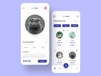 Pet Adoption App Concept adobexd appconcept mobileapp userinterface uiux visualdesigner appdesign design user inteface ui ui inspiration ui  ux design xd