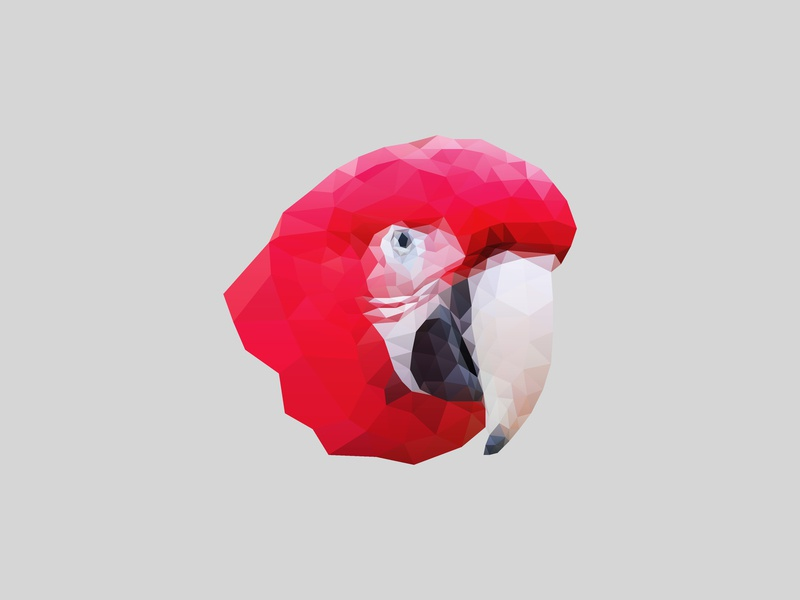 Parrot // Low Poly